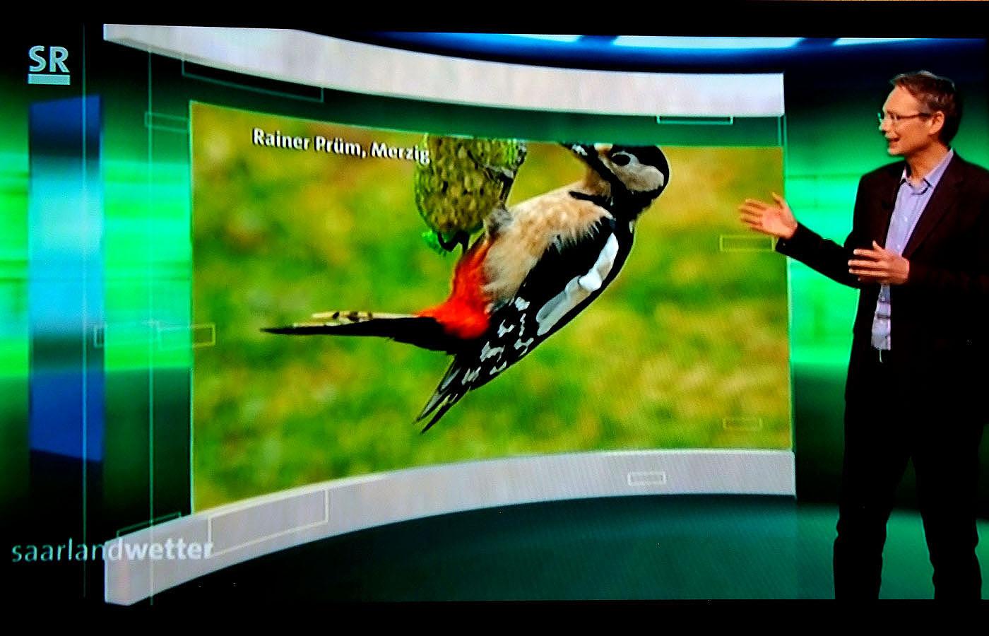 Fotos von Marketingfachmann Rainer Prüm seit neun Jahren im SR Wetter des Saarländischen Rundfunks.