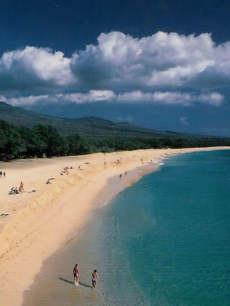 Maui c